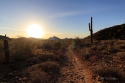 Arizona Landscapes-13