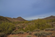 Arizona Landscapes-31