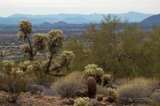 Arizona Landscapes-33