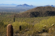 Arizona Landscapes-35