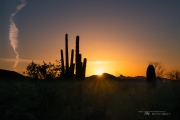 Arizona Landscapes-6