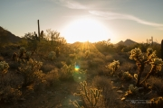 Arizona Landscapes-8