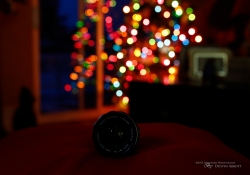 Bokeh Sequence-2