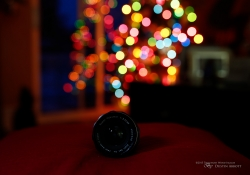 Bokeh Sequence-3