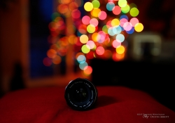 Bokeh Sequence-4