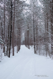 Winter Hike Photos-12