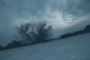 Winter Landscapes-2