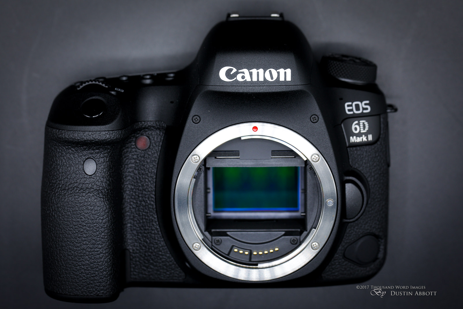 Canon EOS 6D Mark II-6