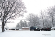 Another Snowstorm-5