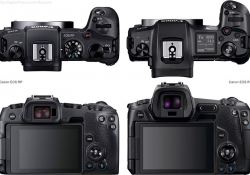03-Canon-EOS-R-Compared-to-EOS-RP