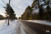 Winter Walk-12