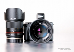 Beautiful Little Lenses-3