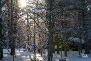 Winter-Light-5