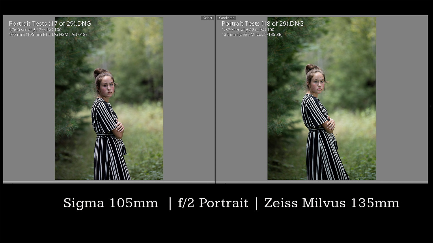 Portrait Comparison
