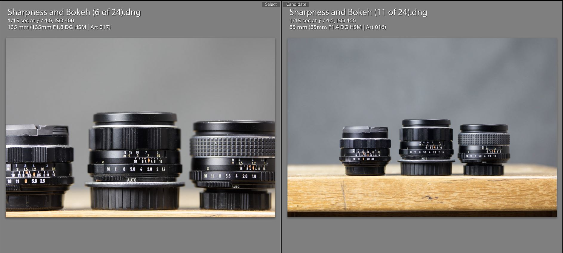85 v 135 Magnification Comparison