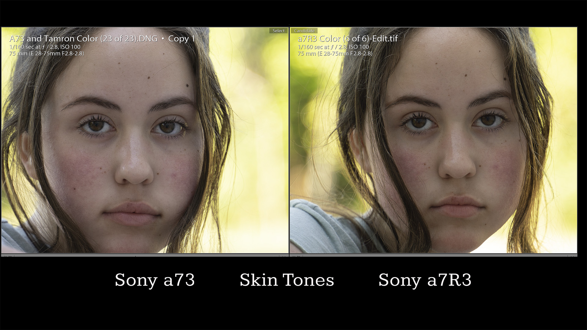 Skin Tones Comparison Pixel