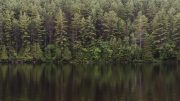 Cottage-country-2