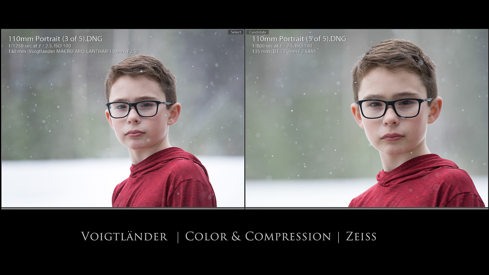 19-Color-Comparison