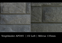 Milvus Comparison Wide Open Left