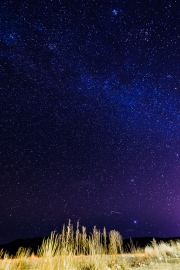 Starry Skies over the High Plains